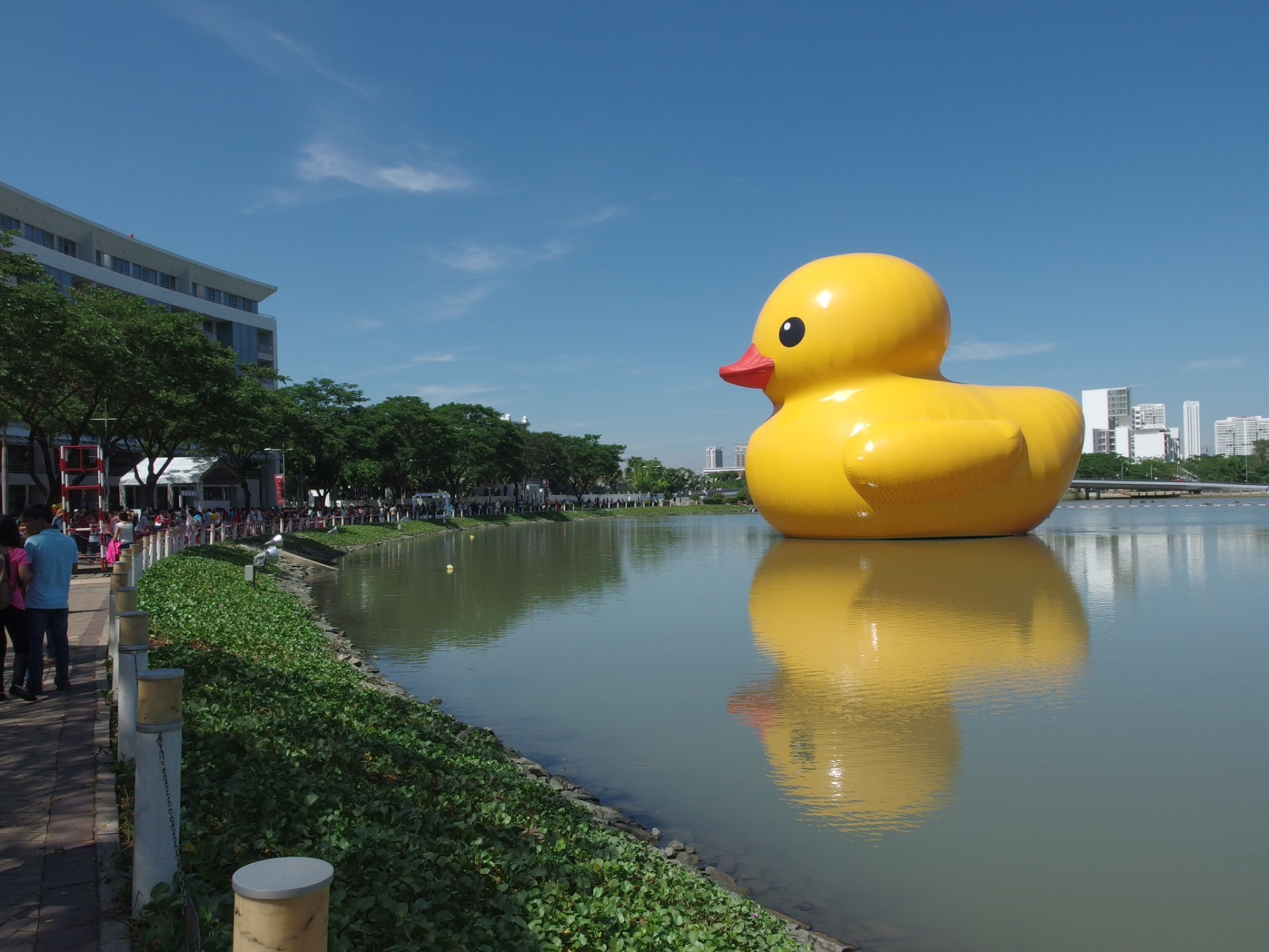 Giant Duckie
